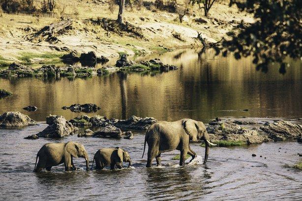 Ruaha National Park in Southern Tanzania