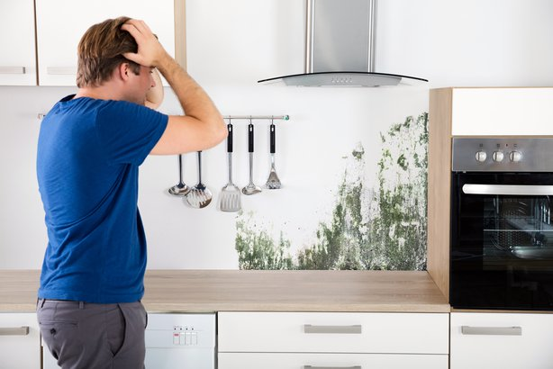 Man looking shocked and mold growing on his kitchen wall