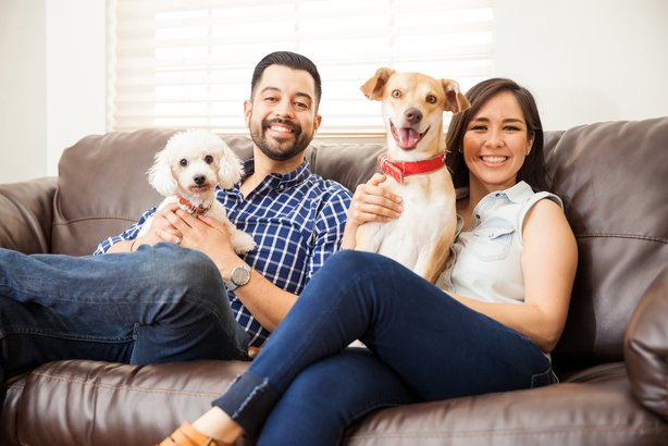 Couple sitting on the couch holding their dogs