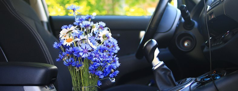 summer flowers in the car