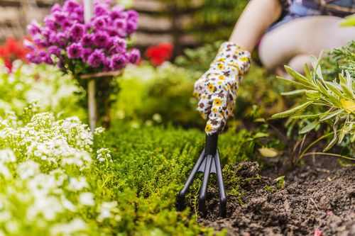 Improve Curb Appeal for Less