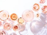 many glasses of rose wine at wine tasting