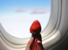 woman's hand holding strawberry by airplane window