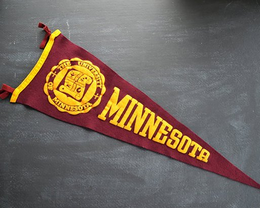 buy online 1a03a c4579 University of Minnesota College Pennant