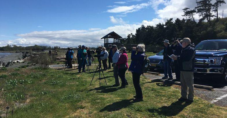 bird watchers during Olympic Peninsula BirdFest, Olympic Peninsula, Washington