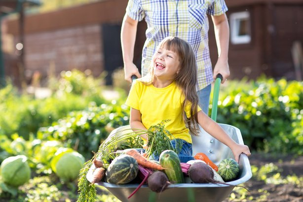 little kid girl inside wheelbarrow with vegetables in the garden