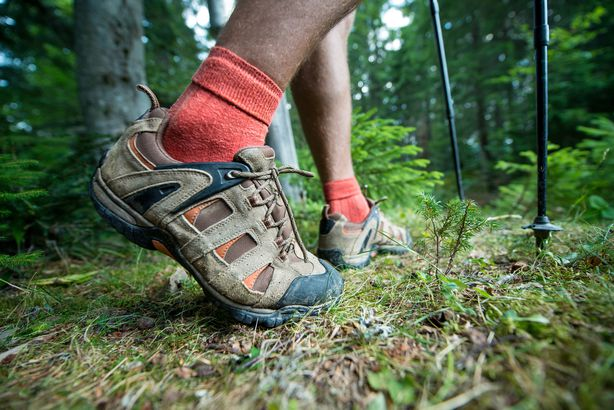 legs of the traveler in hiking boots with trekking poles