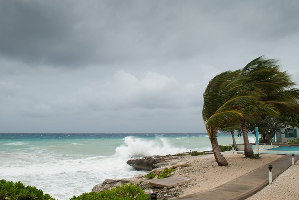 Waves crashing against short and strong winds moving palm tress during a storm