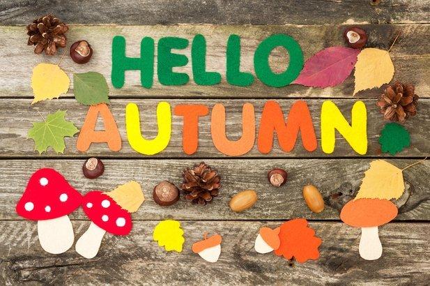 'Hello Autumn' craft sign on wood