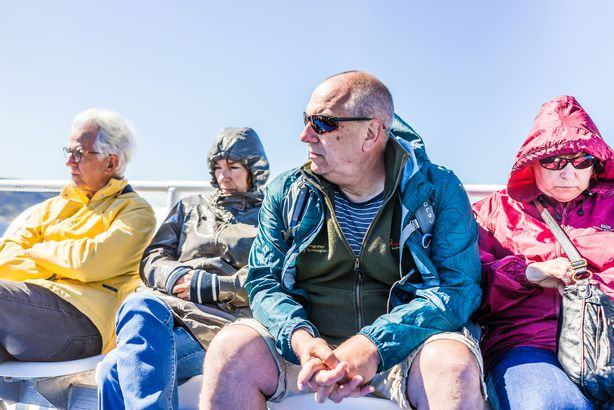 people tourists sitting on boat tour