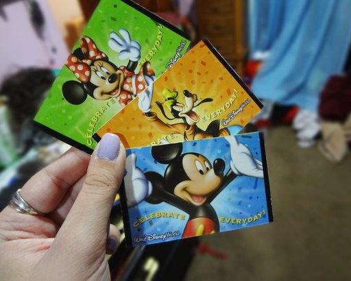 2011 Disney World tickets