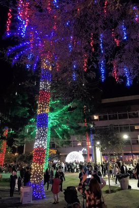50 Best Christmas Light Displays in the U.S. | Cheapism