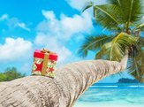 gift box with bow on coconut palm tree at exotic tropical beach