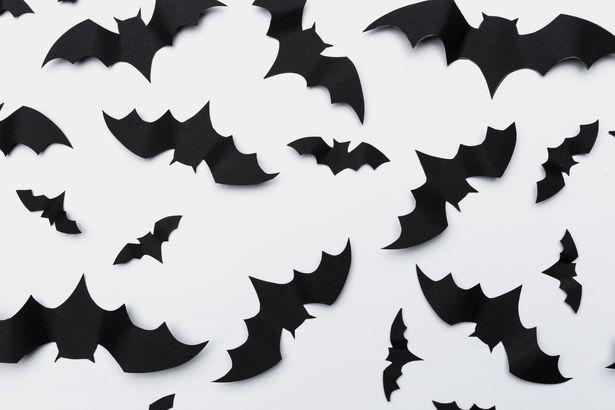 Paper bats Halloween