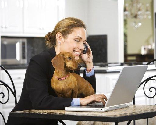 hispanic businesswoman talking on cell phone with puppy in lap