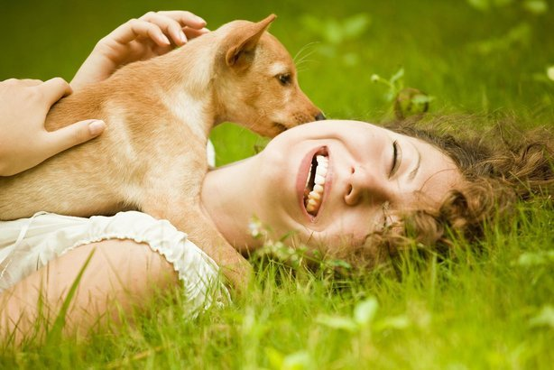 woman playing with her dog while laying in the grass and laughint