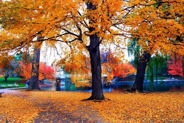 17 Places With Beautiful Fall Scenery Cheapism