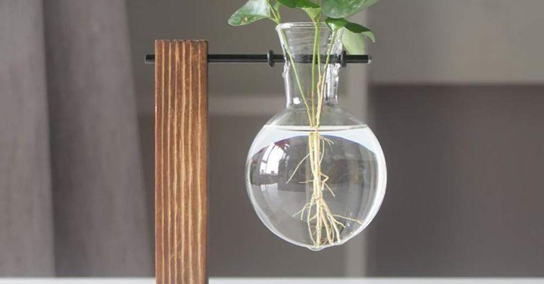 Eyourlife Plant Terrarium