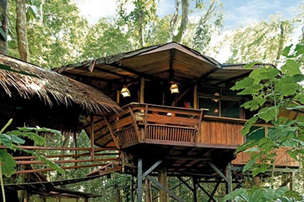 Treehouse hotels cheapism sisterspd