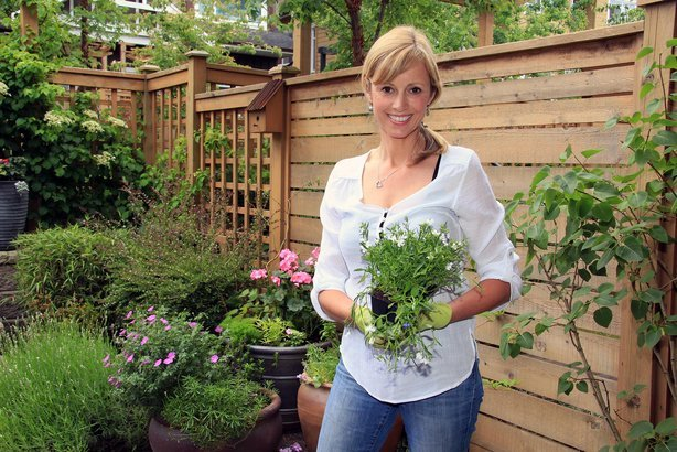 middle-aged woman gardener outside in the garden holding a pack of lobelia