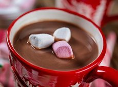 121115 best hot cocoa mix 1 728