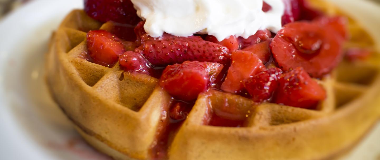 Best Waffles in the U S  - 25 Amazing Waffle Joints Across