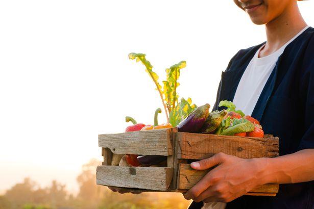 carrying veggies