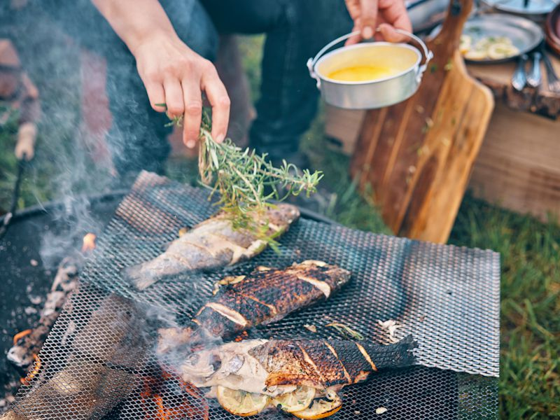 Recipes and Tips for Grilled Fish   Cheapism.com