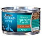 Best Inexpensive Dry Cat Food