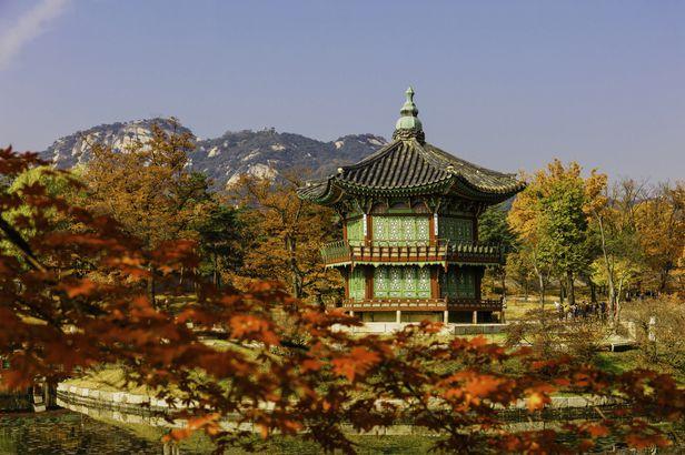 Fall in Seoul, South Korea
