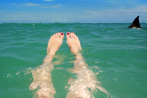 Woman's feet in the ocean with a shark fin close by