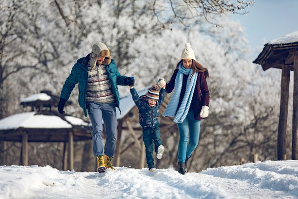 Family playing in the snow