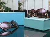 Designer women's sunglasses on display