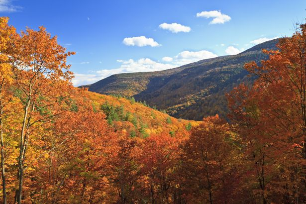 Autumn in Catskills