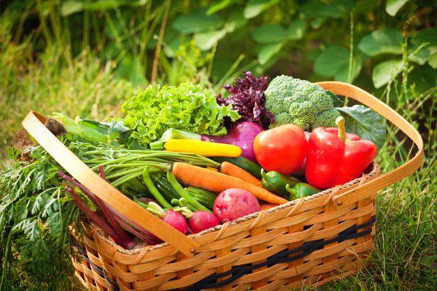 basket of fresh veggies