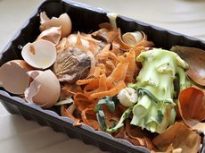 cheap compost bin