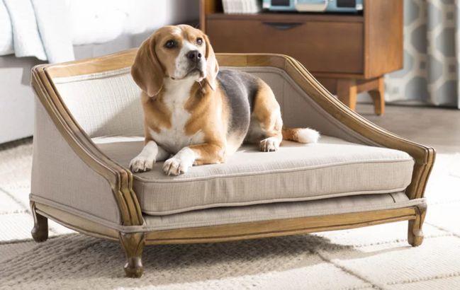 Decorative Dog Sofa