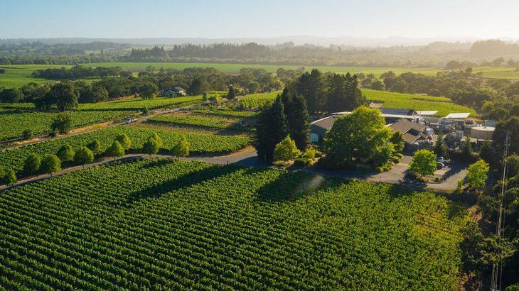 DeLoach Vineyards, Santa Rosa