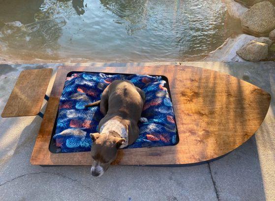 Dog Bed Boat