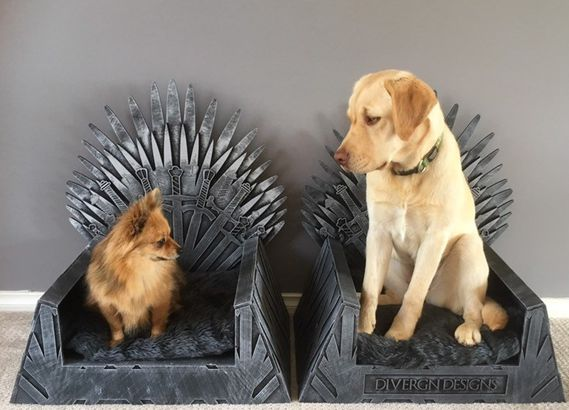 Game of Thrones dog bed
