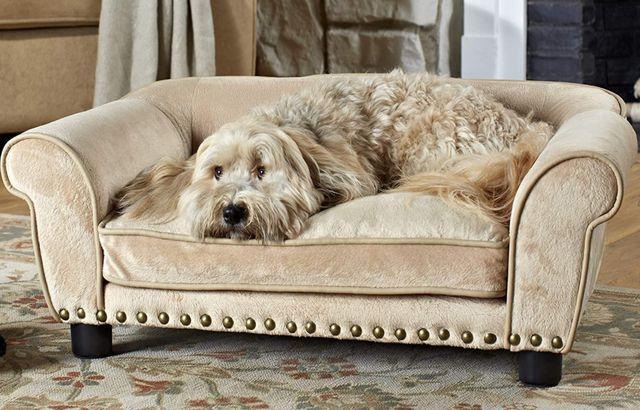 Dreamcatcher Dog Couch
