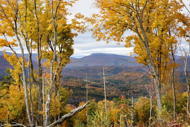 Fall in Catskills