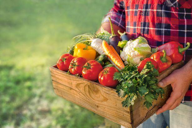 farmer with veggies