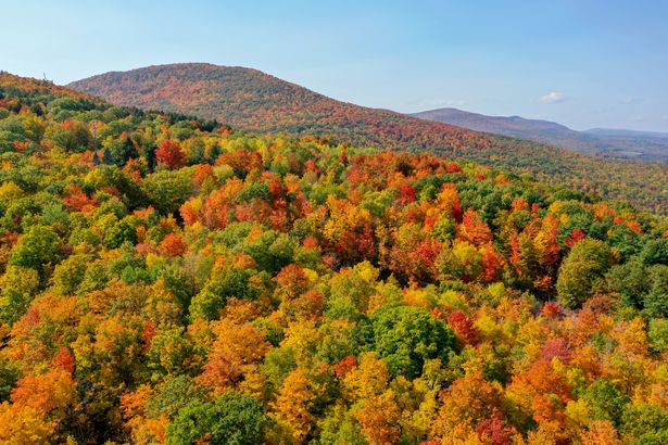 Five State Lookout, Catskills