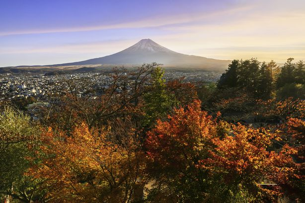 Fall in Fuji, Japan
