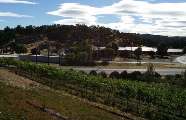 Fults Family Vineyards, Lower Lake