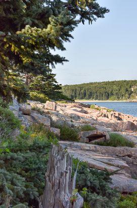 Great Head Trail, Acadia