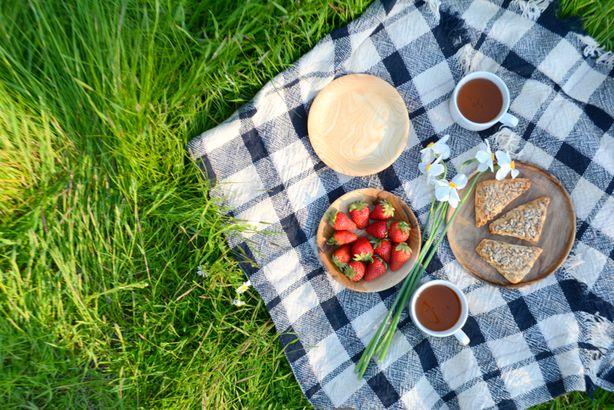 A picnic setup