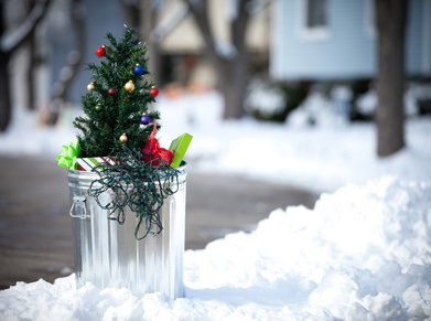 Christmas tree in the garbage