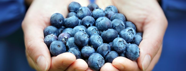 Cheap Fall 'Superfoods'